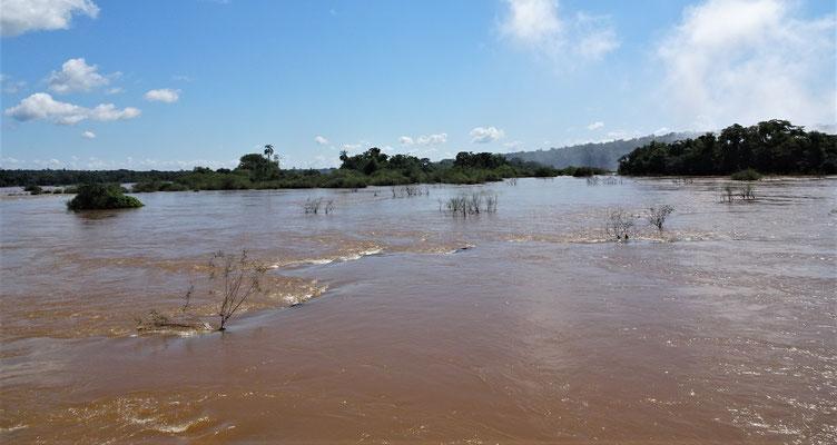 So friedlich sieht der Rio Iguazu oben aus.