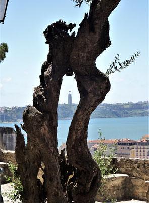 Blick zur Cristo Statue.