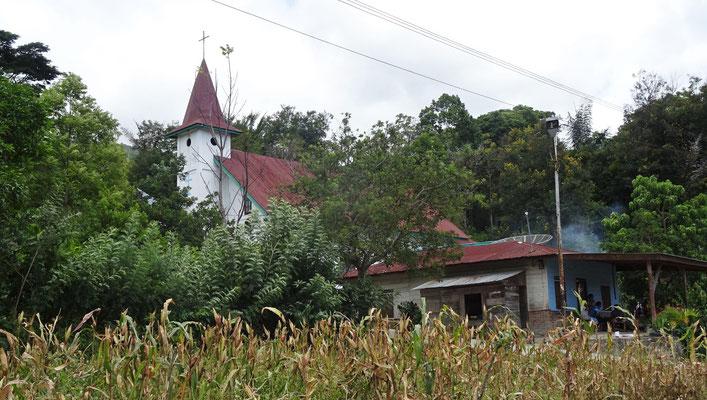 """Die Kirche im """"Dschungel"""""""