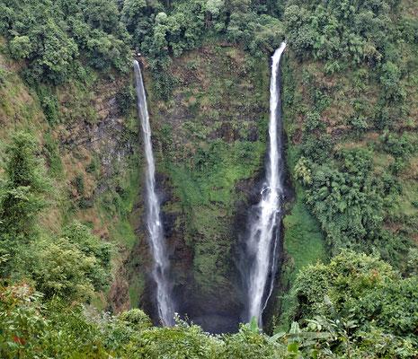 Der 120m hohe Ted Fane Wasserfall.