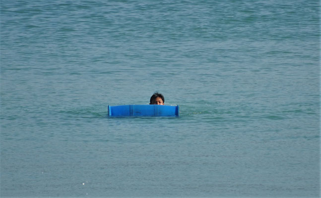 ....der schwimmend an Land...