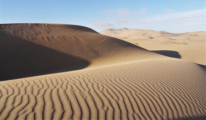 .....in die Sanddünen geht.