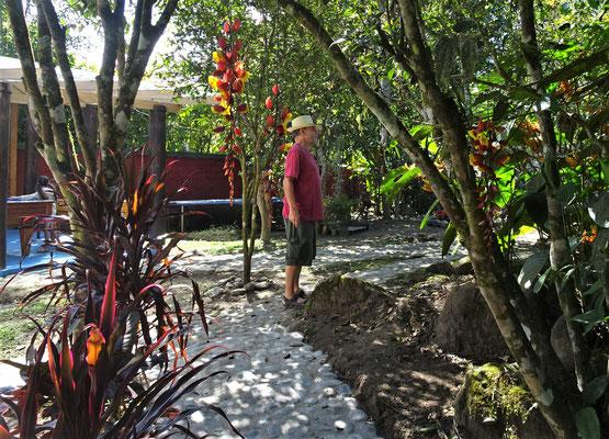 .....den idylischen Garten.