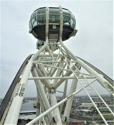 Das Riesenrad, der Melbourne Star....