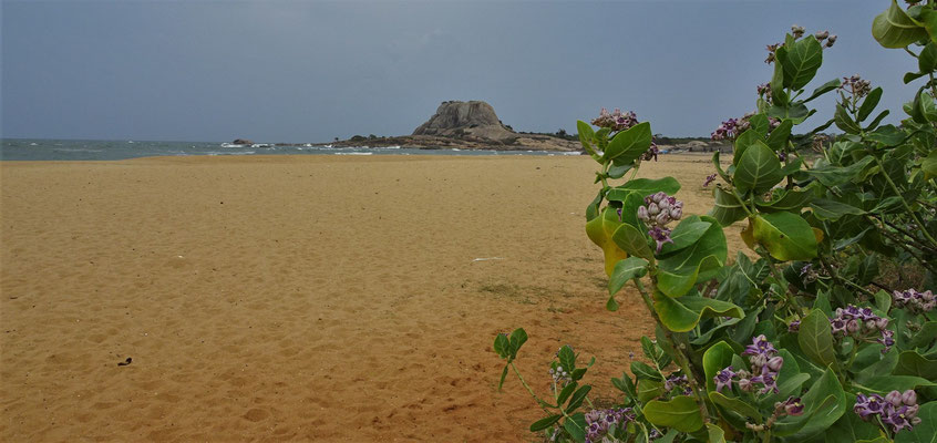 Der schöne Strand...