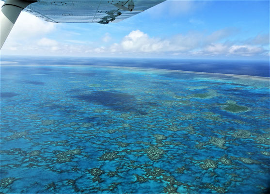 Das Great Barrier Reef.