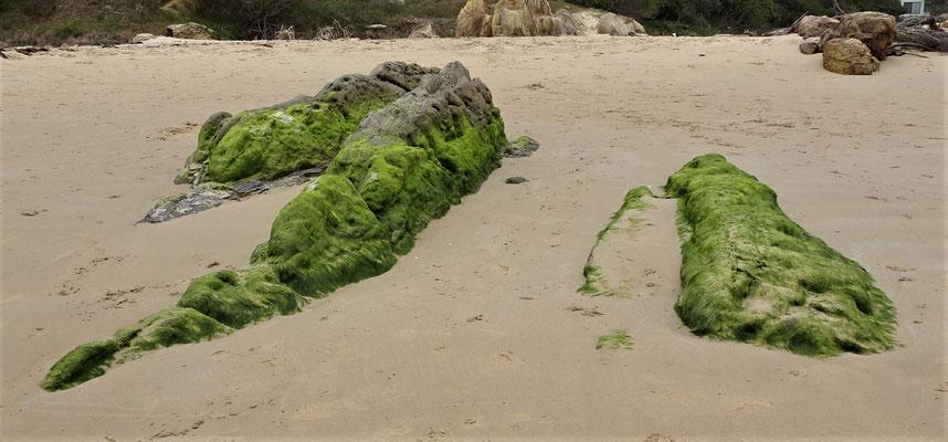 .....Felsen zu Sand.