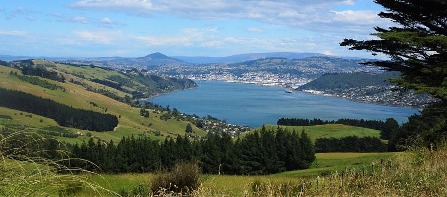 ....der Blick auf Dunedin.