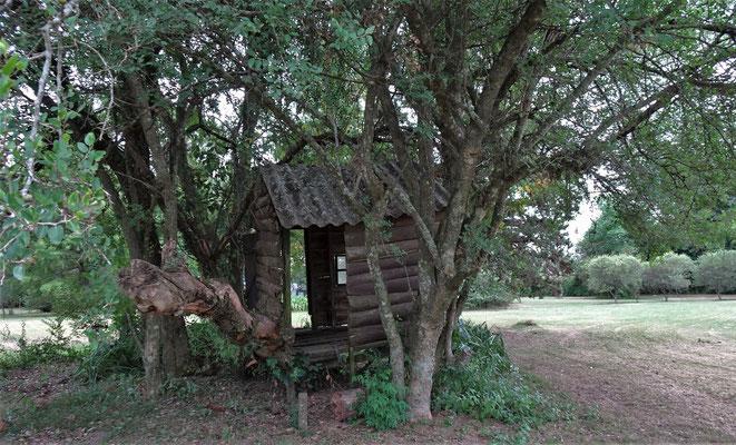 """Eine """"Baumhütte""""."""