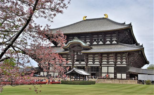 Der Todai-ji Tempel aus dem Jahre 1708.....