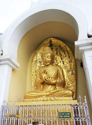 Buddha beim meditieren.