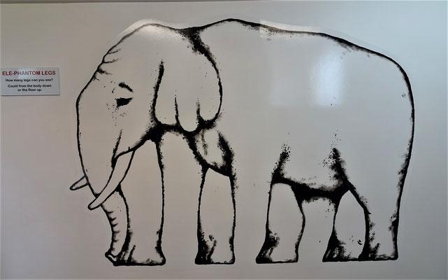 Wie viele Füsse hat dieser Elefant.