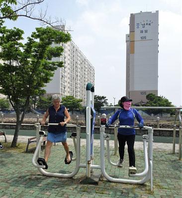 Fitness gibt es hier Gratis.