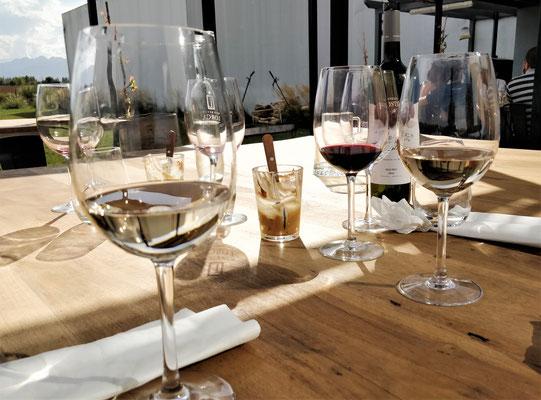 Das Weingut Lorca & Foster.....