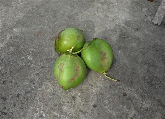 ....und die Kokosnüsse...
