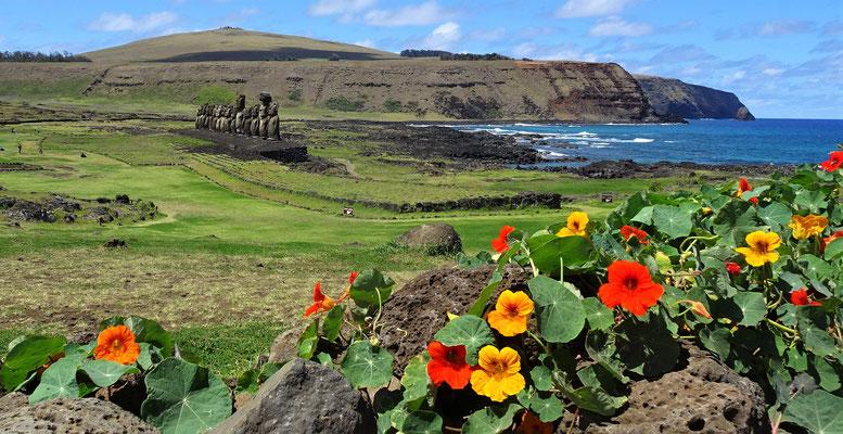 ......15 Moai Figuren.