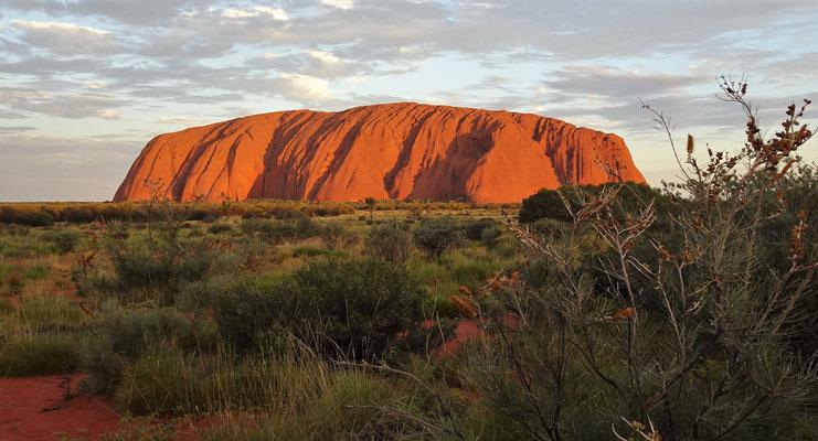 .....vor dem Uluru.