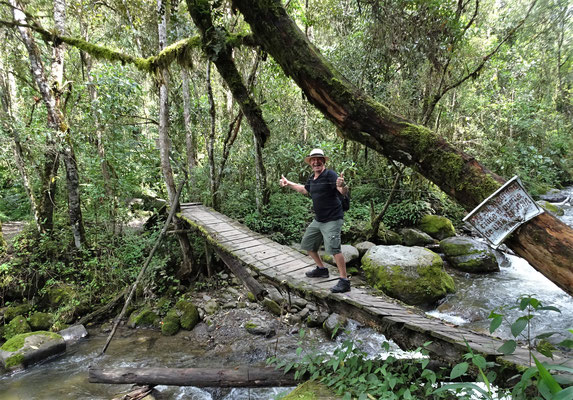 .....zu dieser morschen Holzbrücke....