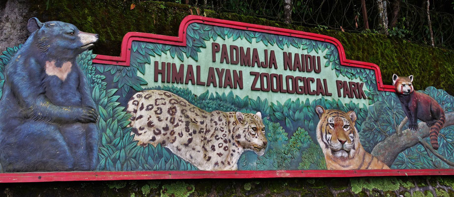 Der Zoo von Darjeeling...