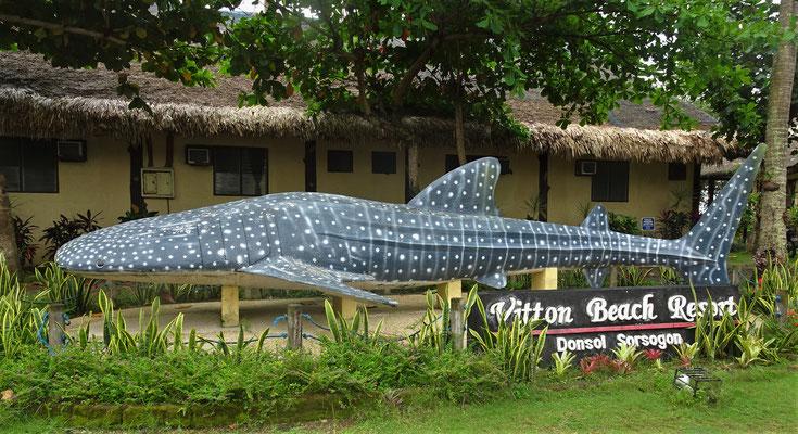 ....mit dem Walhai aus Cement.