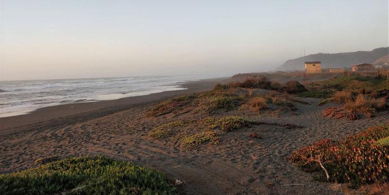 Der Strand mit feinem.....