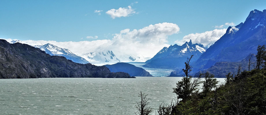 .....mit dem Grey Gletscher.
