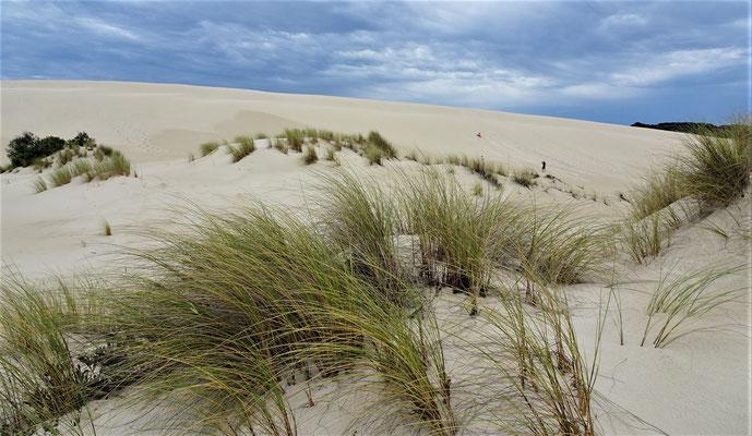Feine Sanddünen die....