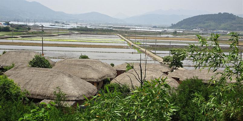 Die Häuser ausserhalb mit den Reisfelder.