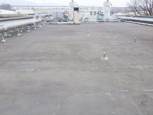 屋根材:防水シート