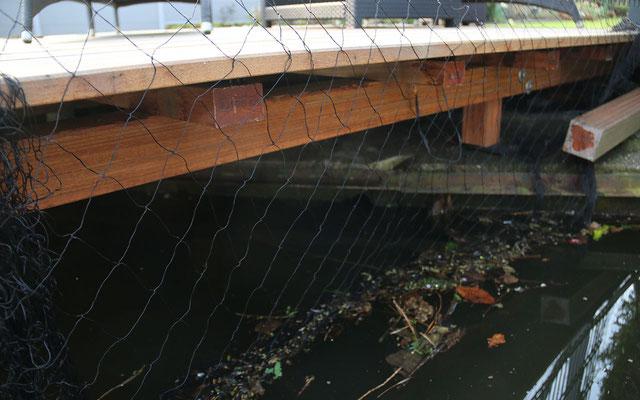 Netze in der Natur sind Todesfallen für alle möglichen Tiere!