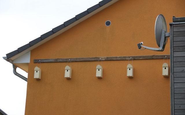 Auch an gedämmte Fassaden können mit speziellen Dämmstoffdübeln Nistkästen montiert werden.