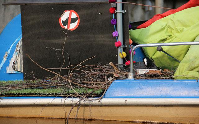 Wenn Bäume fehlen müssen halt Boote herhalten, da sind Blässhühner recht flexibel.