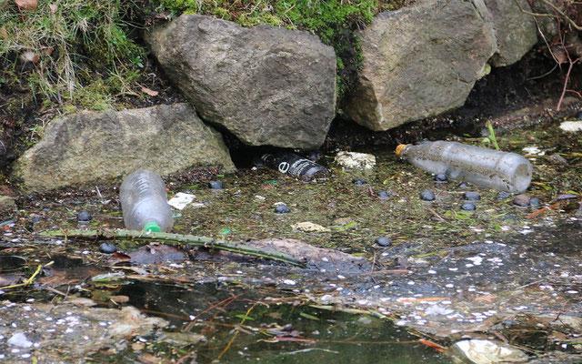 Plastik verschmutzt nicht nur Weltmeere, sondern auch die Alster!