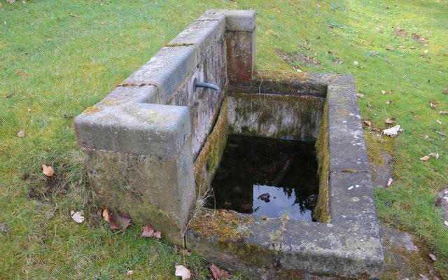 Auch Brunnen mit flachen Mauern sind eine Gefahr für Kleintiere und sollten entschärft werden. (Foto: S. Hinrichs)