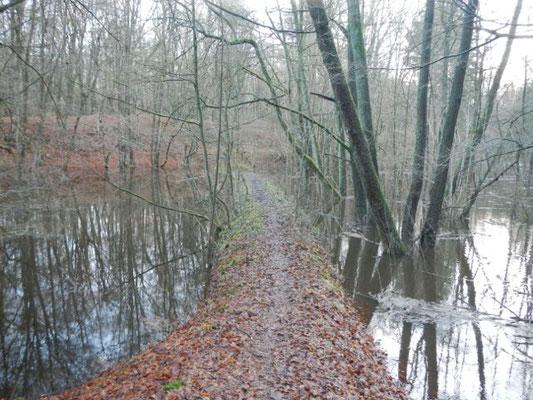 Wege im Überschwemmungsgebiet wirken als Dämme und reduzieren den Flutraum.