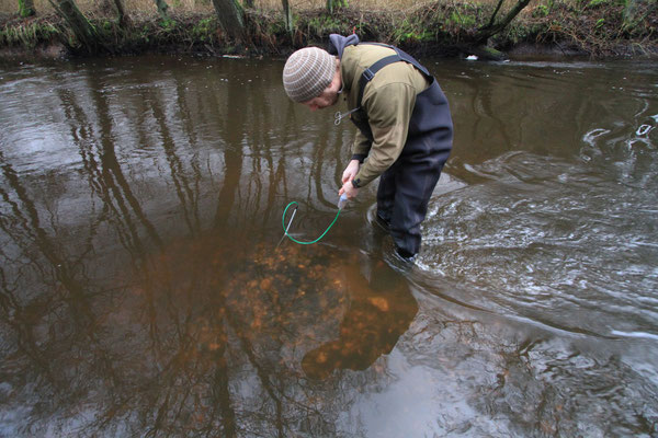 Mattias Hempel zieht mit einer Spritze Wasser aus dem Kiesbett, um den Sauerstoffgehalt zu bestimmen (Foto: A. Lampe).