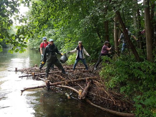 Eimerweise wurde der Kies vor einen Totholzeinbau gekippt. Bei höheren Abflüssen soll er angeströmt werden (Foto: A. Lampe).