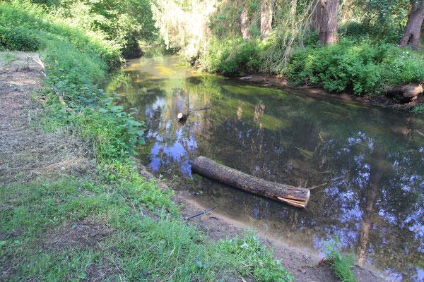 Im Wasser ließ sich das Holz dann bequem flussabwärts treideln (Foto: Andreas Lampe).