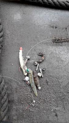 Beim Angeln mit Kunstködern oder auch mit Wurm verhaken oder verheddern sich viele Köder. Die Fleete sind voller Angelschrott
