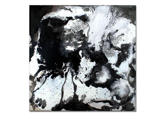 schwarzweiss bild