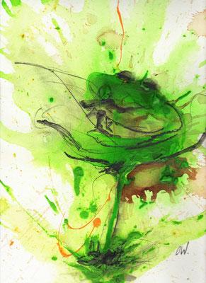 bekiffter Frosch - Bild
