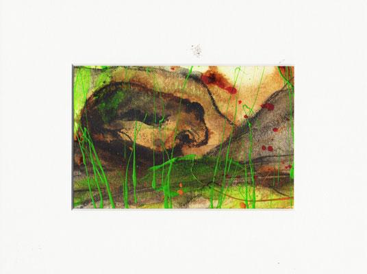 sitzender Frosch - Bild