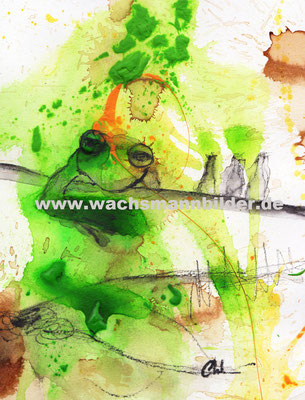 Froschbilder malen lassen - Wachsmann - grün - gelb Frösche