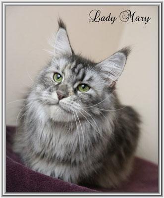 Lady Mary 3 Jahre