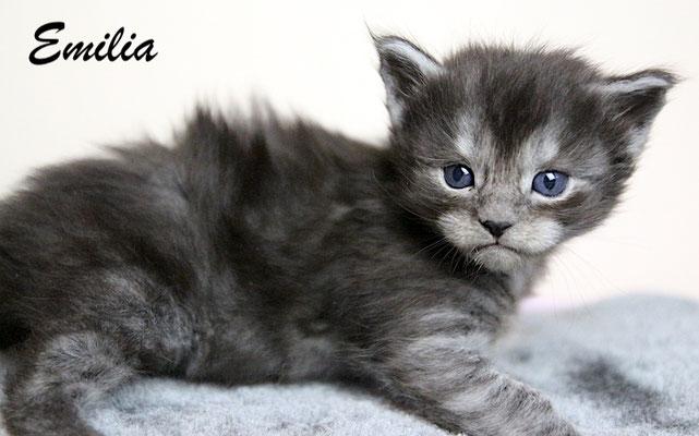 Emilia 3,5 Wochen