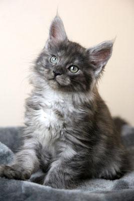 Emilia 8 Wochen