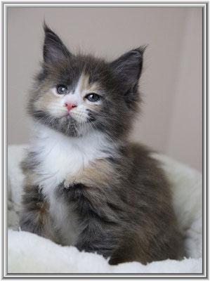 Yamila 6,5 Wochen