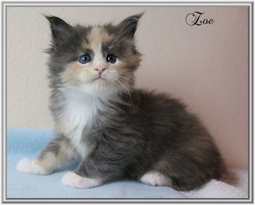Zoe 5 Wochen