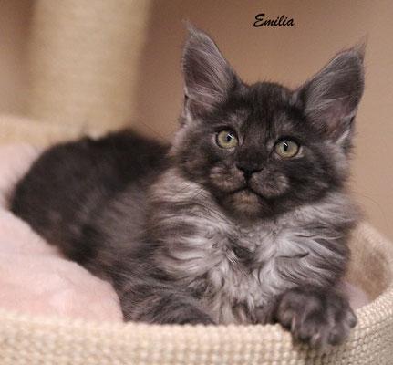 Emilia 13 Wochen