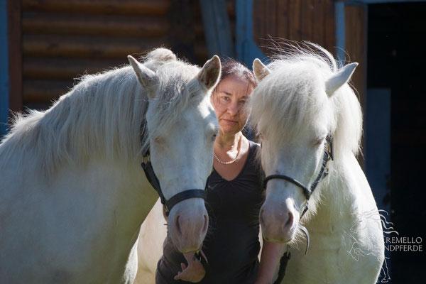 September 2014 - Die drei Damen von Cemello Islandpferde ;-)